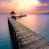 maomao555